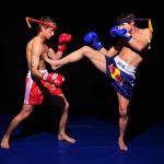 Тренировки по боевым искусствам
